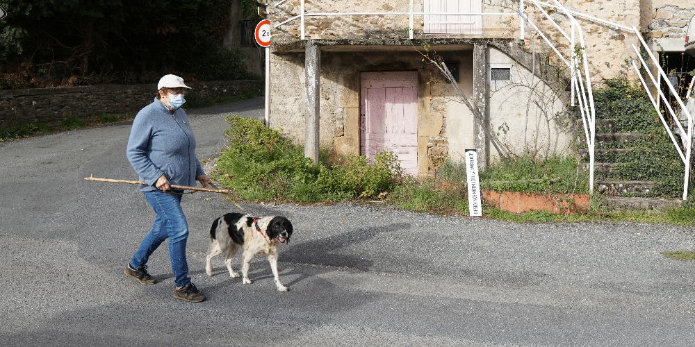 Spaziergang  mit Hund und Maske.